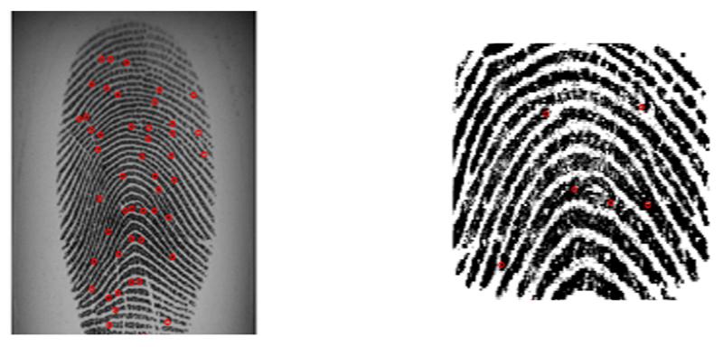 Проход по отпечатку пальцев
