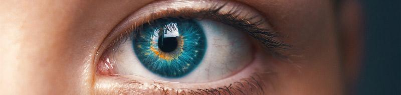 Идентификация по сетчатке глаза